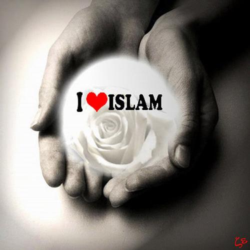 Kata Mutiara Tentang Cinta Dalam Islam | ChugyGogog